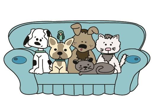 Fur Buddies Pet Care